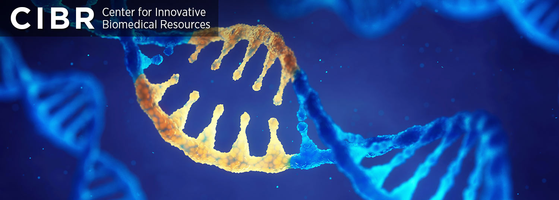 Translational Genomics Laboratory Banner01