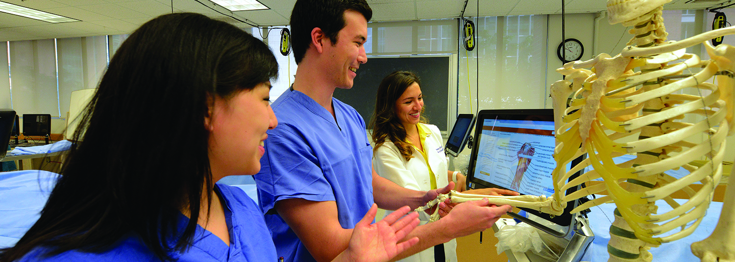 Your Medical Education