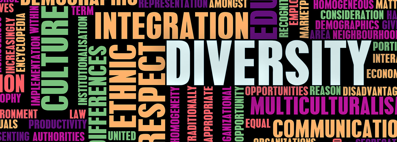 Diversity Banner 04