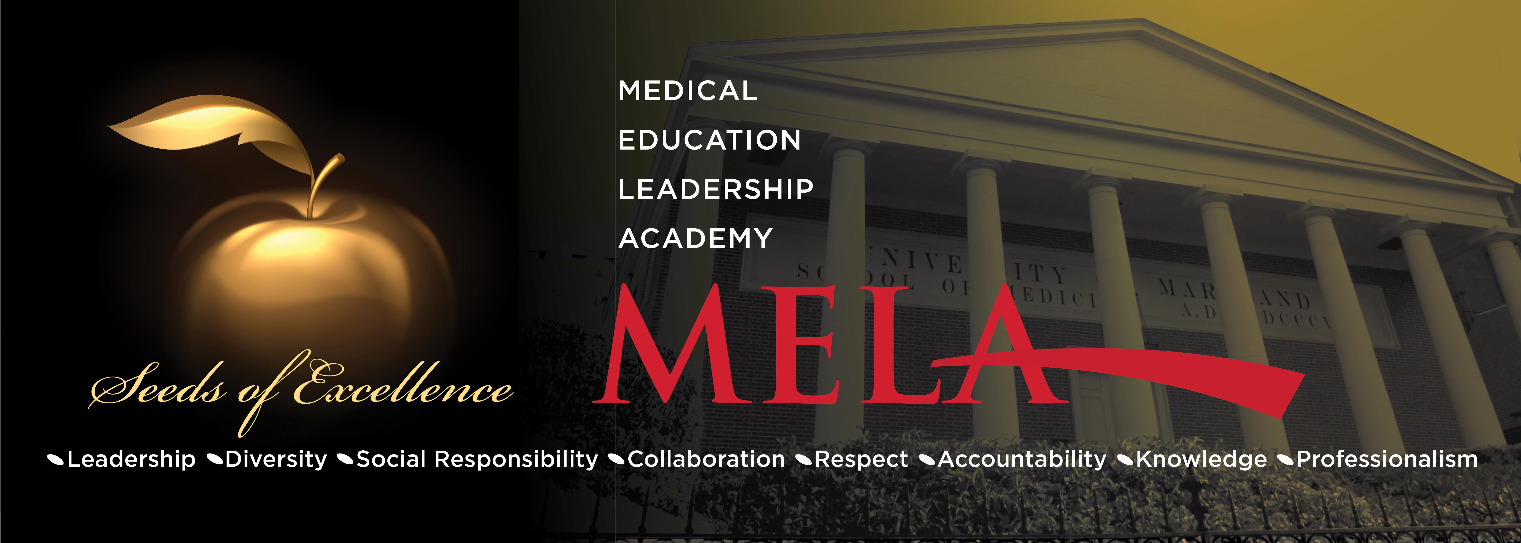 Medical Education Leadership Academy