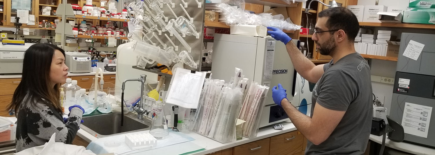 Drs. Chen-Ying Ho and Mohammad Salimian working in lab