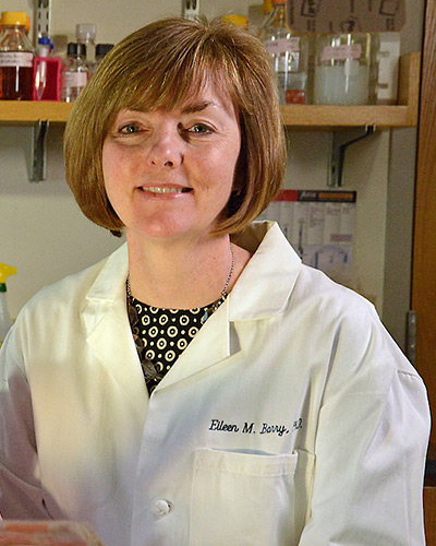 Eileen Barry, PhD