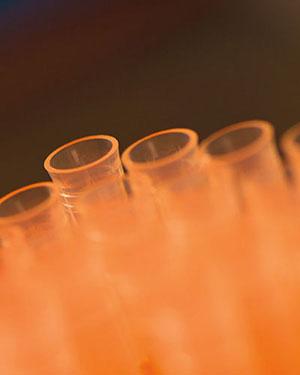 Orange test tubes