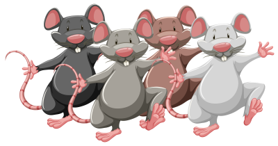 A line of cartoon rats depicted on two legs stepping forward. The first rat is black, the second gray, the third brown, and the fourth gray.
