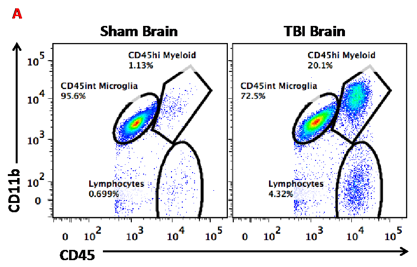 Flow Cytometry and Immunological Responses to TBI Figure A