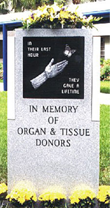In Memory of Organ & Tissue Donors