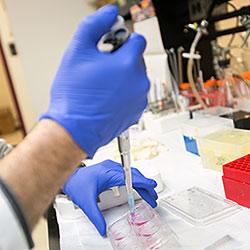 Lab tech using a dropper