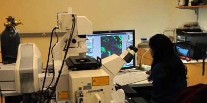 Olympus LCV Microscope