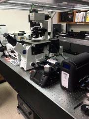 Olympus FV300 Microscope