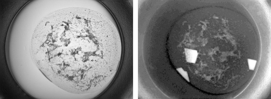 X-ray Crystallography Image01