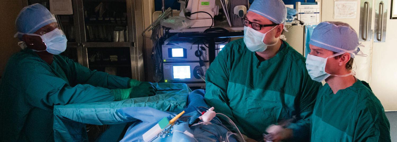 Department of Surgery | University of Maryland School of Medicine